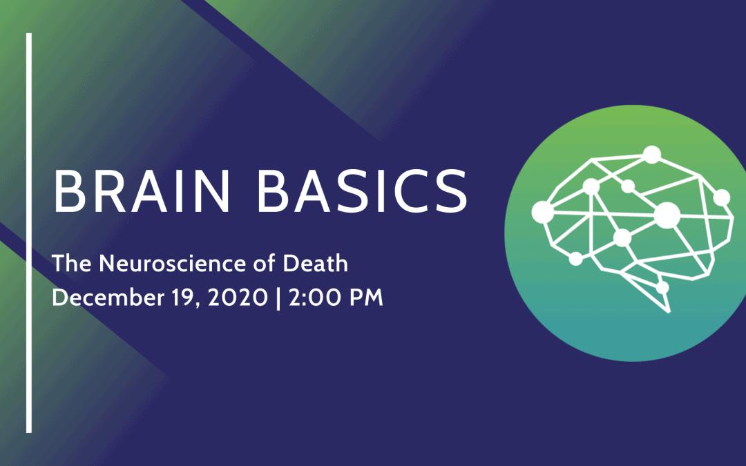 The Neuroscience of Death